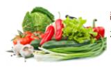 蔬菜喷洒甲醛会怎样 实验结果:冲洗10分钟仍有残留