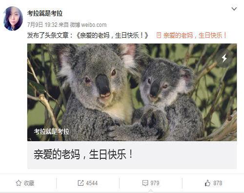 """人权律师助理""""考拉""""赵威微博公开揭""""维权律师""""双重骗局"""